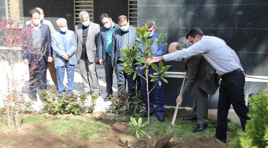 برگزاری آیین درختکاری در شرکت سرمایه گذاری آتیه صبا